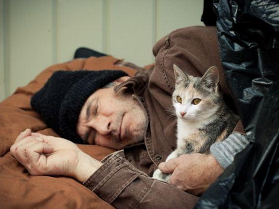 08-pets-homeless
