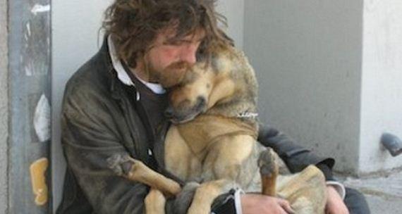 09-pets-homeless
