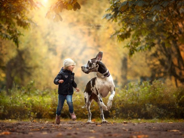 11-little-kids-and-their-big-dogs