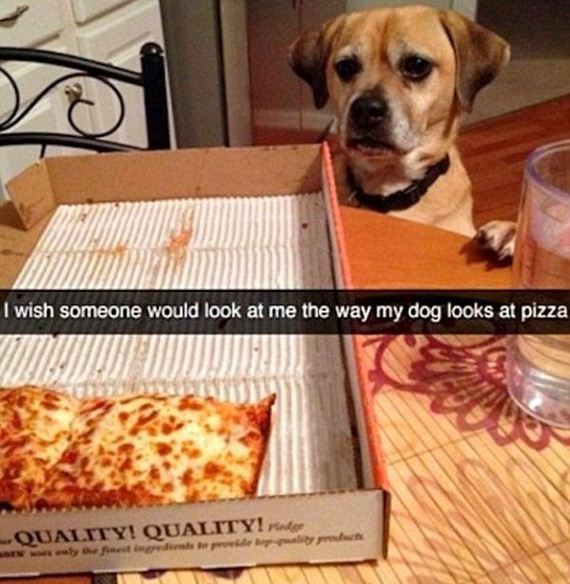 11-snapchat-pet-photos