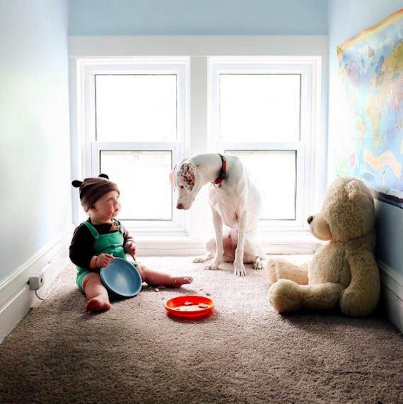 12-tiny-human-dogs