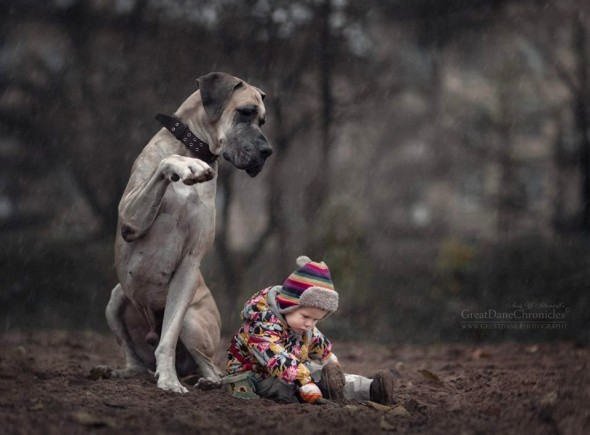 13-little-kids-and-their-big-dogs