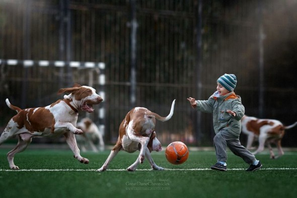 16-little-kids-and-their-big-dogs