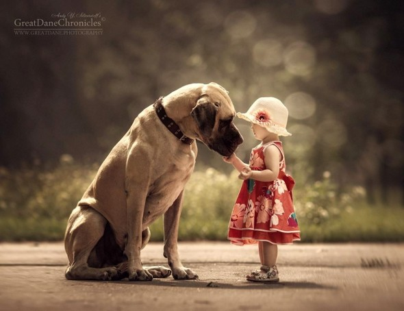 17-little-kids-and-their-big-dogs
