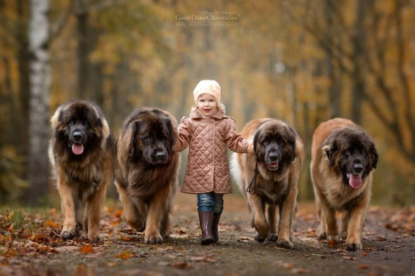 21-little-kids-and-their-big-dogs