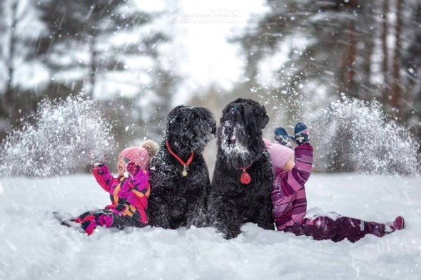 22-little-kids-and-their-big-dogs