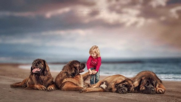 23-little-kids-and-their-big-dogs
