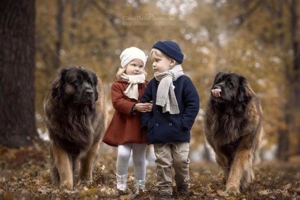 24-little-kids-and-their-big-dogs
