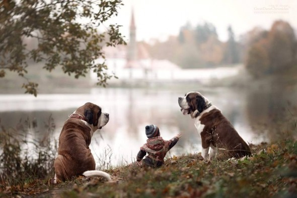 26-little-kids-and-their-big-dogs