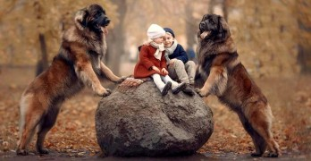 27-little-kids-and-their-big-dogs