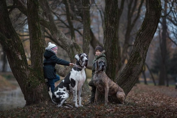 28-little-kids-and-their-big-dogs