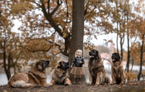 29-little-kids-and-their-big-dogs