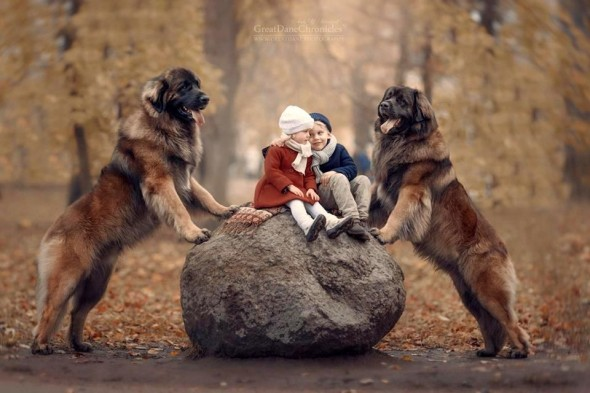32-little-kids-and-their-big-dogs