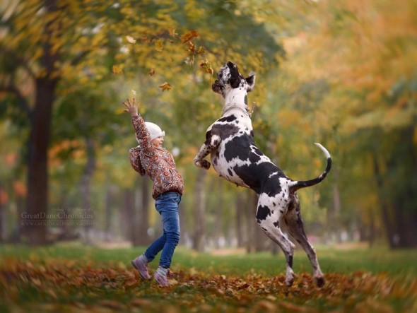 36-little-kids-and-their-big-dogs