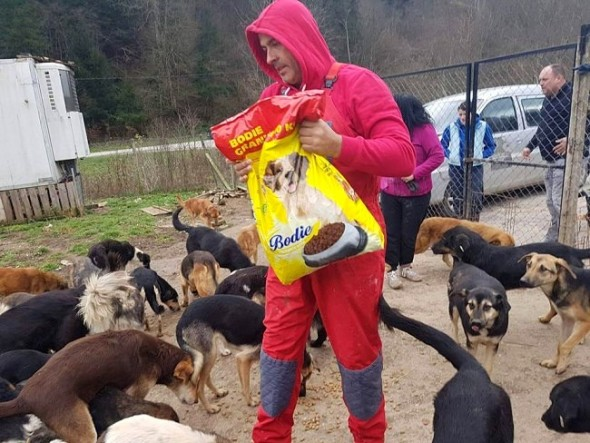 bosnian-taxi-driver-heroically-saves-dog-from-being-drown-in-a-river6