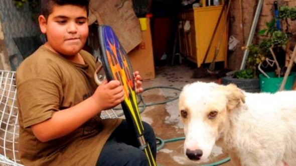 Boy Tries to Sell His Prized Possession to Get a Street Dog Urgent Medical Attention