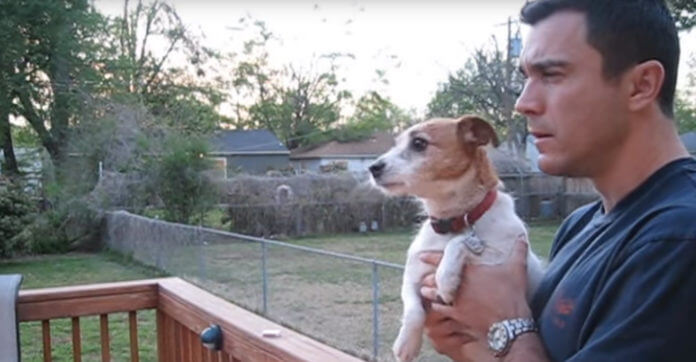 Dog Goes Adorably Nuts When Dad Talks To Her About Squirrel