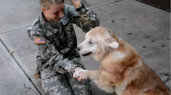 Deaf Dog Has Emotional Reaction To Her Human Coming Back From Basic Training