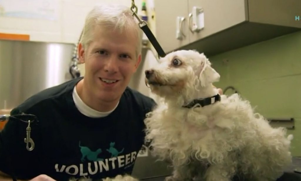 Man volunteers his time as a groomer to help shelter dogs get adopted