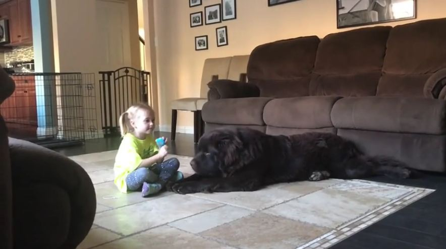 Mom catches daughter and dog speaking in secret language, girl's response is too much