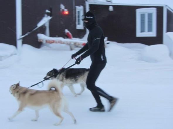 crazy-winter-walker4