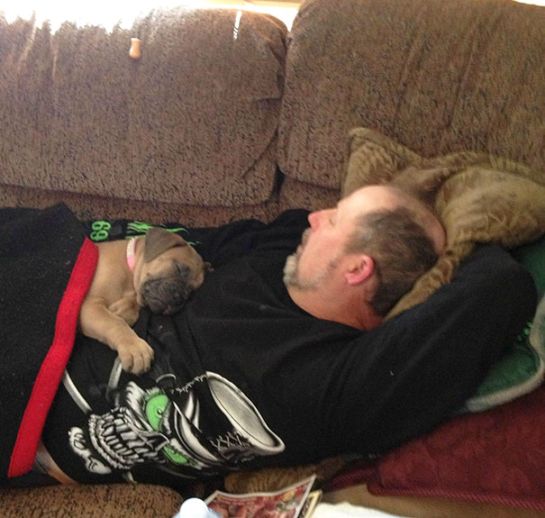 "Ten Dog Dads Who Wanted ""Nothing to Do with Getting a Dog"""
