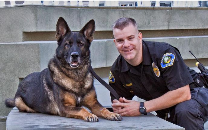 A police dog was shot in the head while chasing a suspect — now his partner sees him again