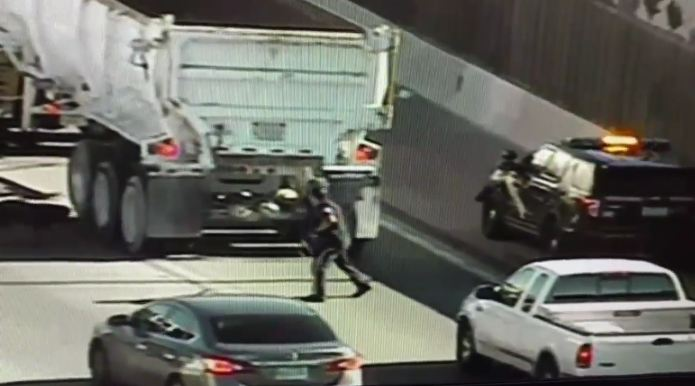 Dog Running Loose on Highway Shuts Down Busy Traffic for 30 Minutes During Rescue