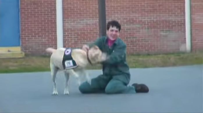 They bring a dog to prison, and he takes off running — but where is he going?