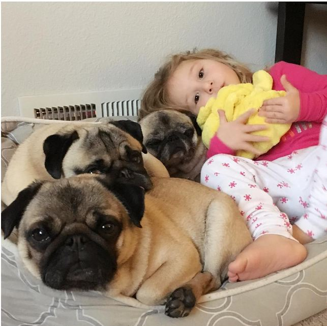 Just One Of The Grumble: Little Girl And Her Three Best Friends Are Taking On The World!