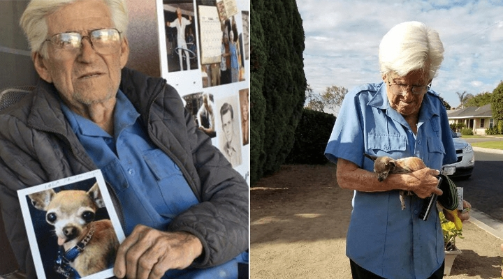 93-Year-Old War Vet Was Devastated When His Dog Was Stolen. Thankfully, They Had A Sweet Reunion