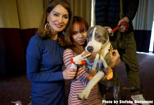 pit-bull-puppy-who-stopped-rape-is-honored1