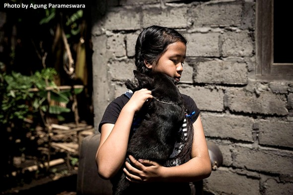 year-old-girl-has-rescued-29-street-dogs5