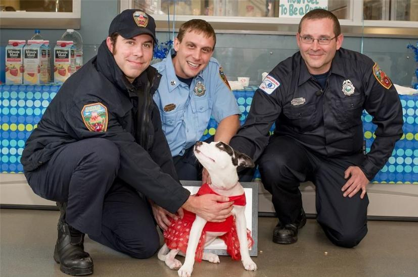 Firefighters Save Puppy From Burning Home. Months Later, They Return For A Touching Reunion