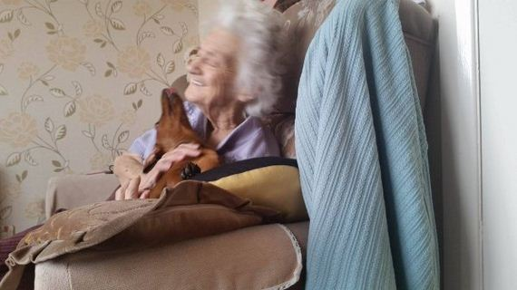 95-year-old Alzheimer's patient was angry and scared until she met this therapy dog