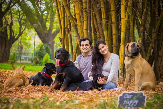 This Pregnant Couple Was Told To Get Rid Of Their Dogs, And This Is What They Did In Response