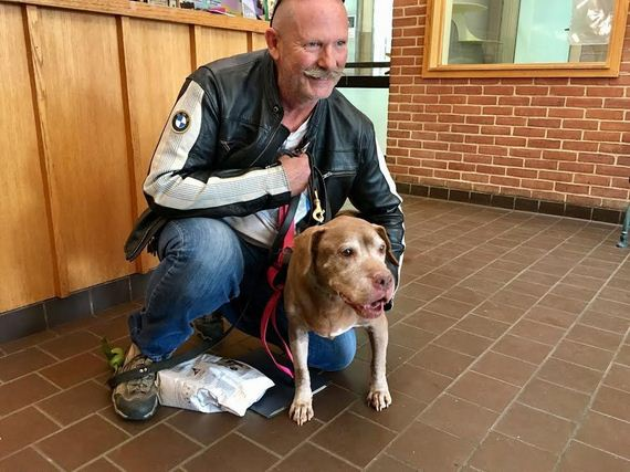 18-Year-Old Shelter Dog Finally Finds The Perfect Dad