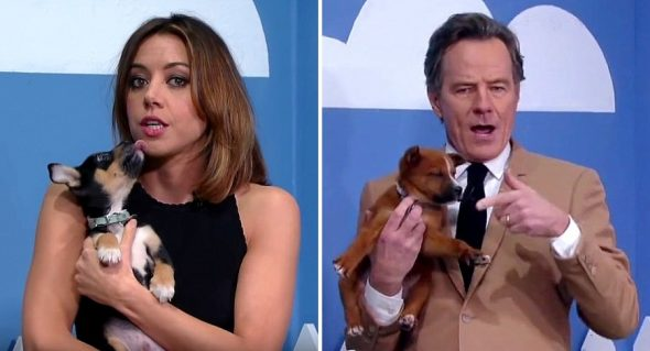 Celebrities Are Telling Ridiculous Lies to Help Rescue Puppies Get Adopted
