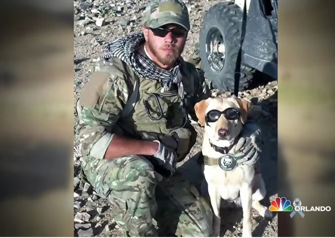 Soldier turns around to see his former military dog running toward him