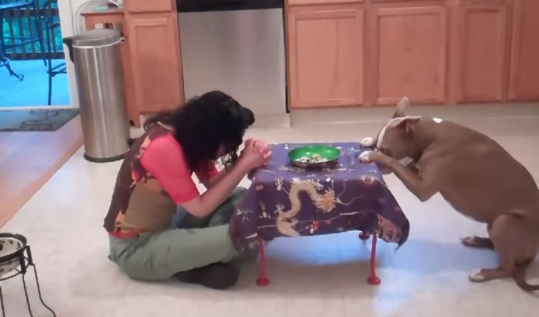 When she tells her dog that she doesn't feel well? Amazing reaction!