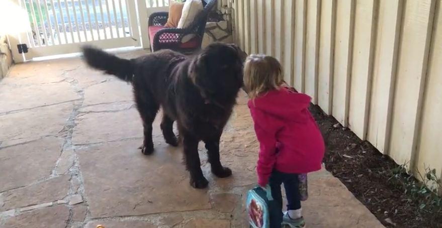 Little girl kisses dog goodbye before school