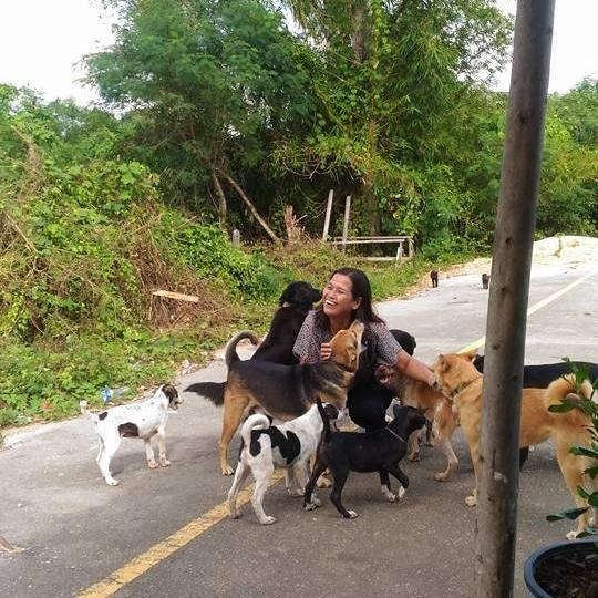 Stray Dog Always Brings A Gift To The Woman Who Feeds Him