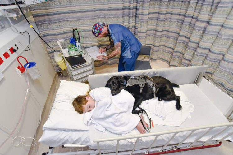 A Touching Moment Between A Boy And His Service Dog
