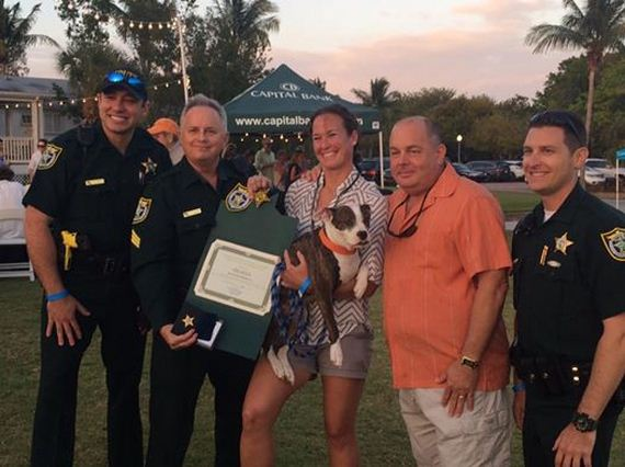Deaf Disabled Dog Diagnosed With Cancer Becomes Honorary K9 Officer