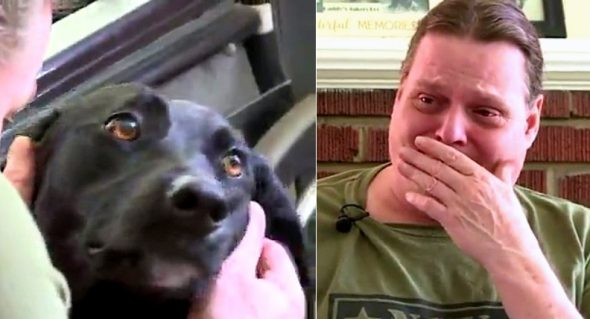 Disabled Man Cries When He's Surprised With a New Service Dog for Easter