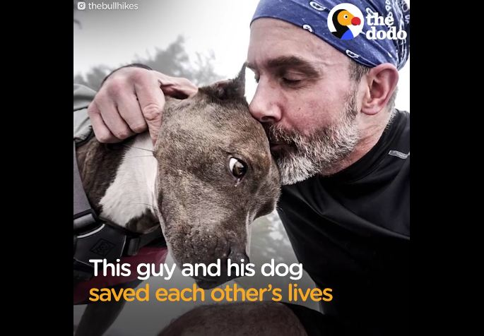 Recovering addict adopts dog from the euthanasia list, but she won't even look at him