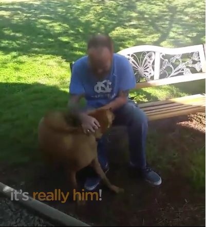 He lost 50 pounds during a 5-week stay in the hospital, now his dog doesn't recognize him