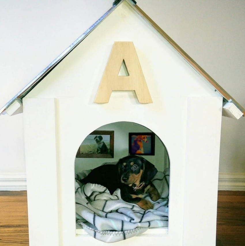 Man Has Leftover Supplies From DIY Project, So He Builds Adorable Dog House For Sister's Puppy
