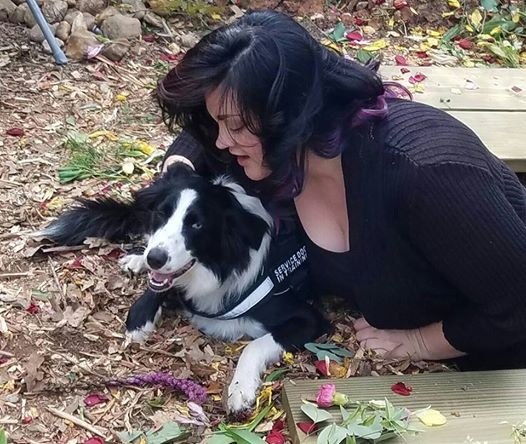 Grief Therapy Puppy-In-Training Instinctively Comforts Mourners