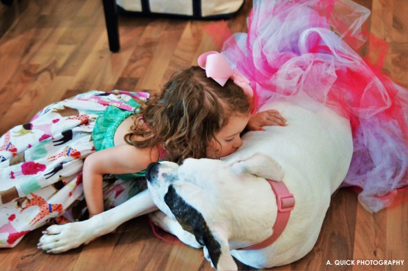 Therapy Dog in Tutu Makes Birthday Wish Come True for Little Girl